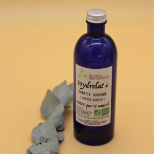Hydrolat de carotte sauvage – 200 ml