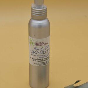Parfums d'ambiances – 100 ml