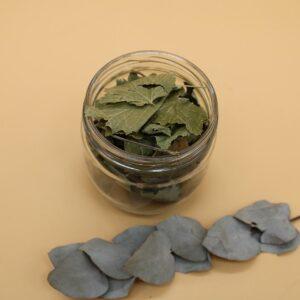 Cassis (tisane) – 20 gr